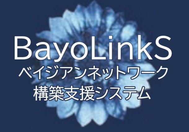 分析や意思決定に使われる「人の知見」とデータを融合させた要因分析!~BayoLinkS 紹介セミナー~